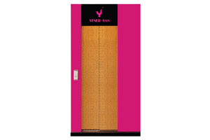 Telescopic 2 Panels Cabin Doors